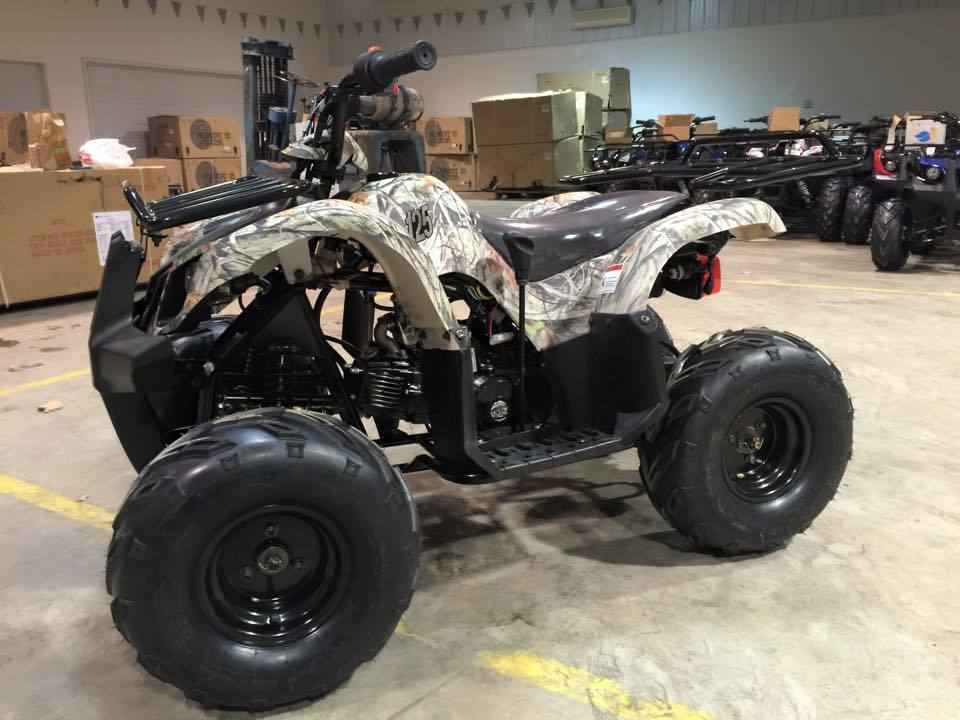 New 2017 Coolster 125ccAUTO ATVs For Sale in Minnesota on atvtrades com